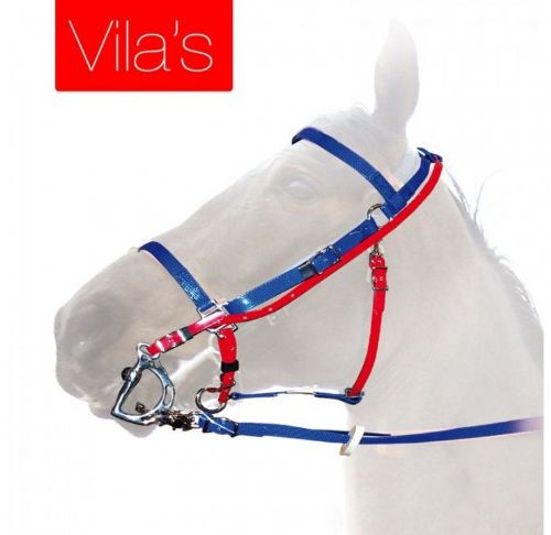 VILA's endurance bridle, by Zaldi